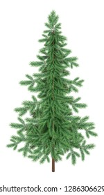 Green Christmas spruce fir tree isolated on white background. Eps10, contains transparencies. Vector