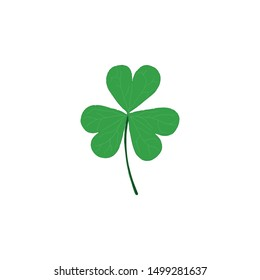 Green clover leaf isolated on white background. Hand drawn vector illustration.