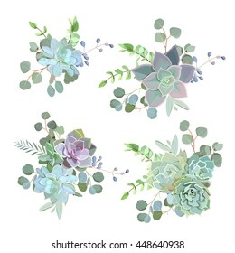 Green colorful succulent Echeveria vector design objects. Natural cactus bouquets in modern funky style. All elements are isolated and editable.