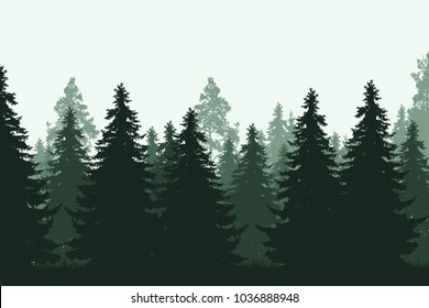 Green coniferous forest with grass - realistic vector illustration