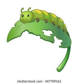 Green cute caterpillar on leaf. Vector cartoon illustration of caterpillar isolated on white