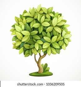 Green decorative little tree isolated on white background
