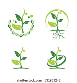 Green DNA Ecology Leaf Plant Health