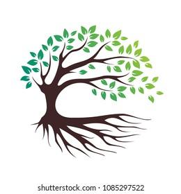 green eco tree vector icon, bio logo, garden sign, forest symbol
