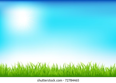 Green Field And Blue Sky, Vector Illustration