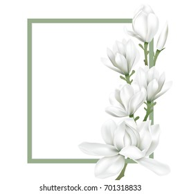 Green frame decorated with white magnolia blossom flowers on white background. Vector illustration.