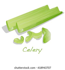 Green fresh celery. Stick isolated vector on white.