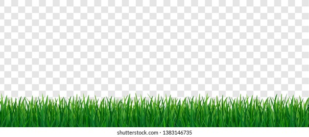 Green fresh grass seamless pattern on transparent background. 3d nature herb, field, meadow, yard or lawn vector illustration. Organic floral frame for eco design border, web, summer and spring sale