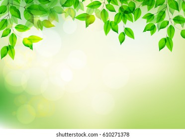 Green fresh leaves.Blurred background.Summer or Spring season. Vector illustration.EPS10