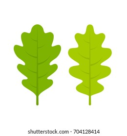 Green fresh oak vector leaflet on white background