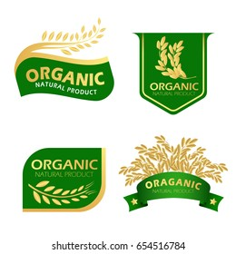 Green and gold paddy rice organic natural product banner vector design