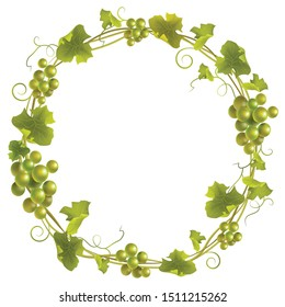 Green grape wreath. Round green frame bunches of grapes. Vector illustration.