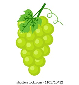 Green Grapes Illustration - Bunch of green grapes with stem and leaf isolated on white background