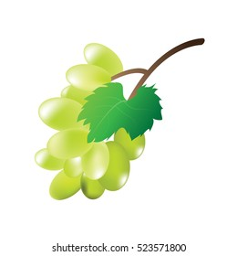 Green grapes on a white background,vector design.