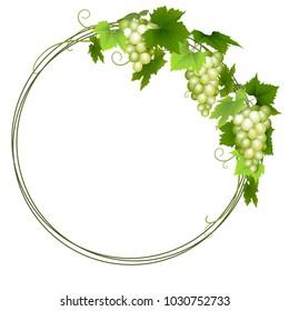 Green grapes wreath