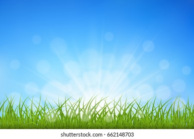 Green grass against blue sky sunbeams and bokeh background, vector illustration.
