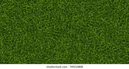 Green grass background. Lawn nature. Abstract field texture. Ecology symbol. Vector Illustration