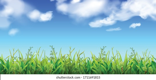 Green grass and blue sky with clouds background realistic vector illustration