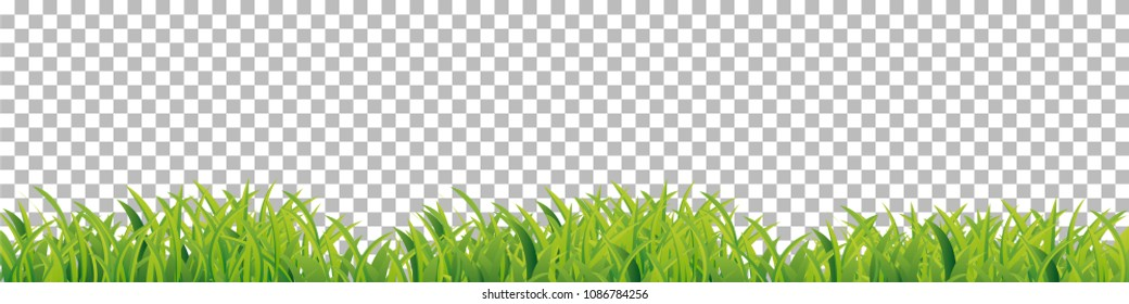 Green grass border frame, design element isolated on checkered transparent background