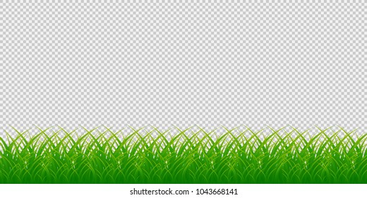 grass border no background green grass green grass border isolated on transparent background vector illustration border background stock