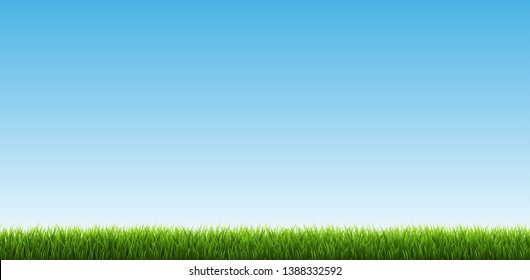 Green Grass Border With Sky, Vector Illustrationм