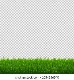 grass border no background border ocean green grass border transparent background vector illustration isolated on stock