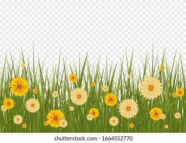 Green Grass Border And White Background. Big Green Grass And Flowers Set With Gradient Mesh