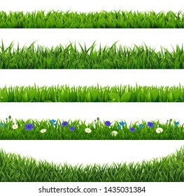 Green Grass Collection Border Isolated With Gradient Mesh, Vector Illustration