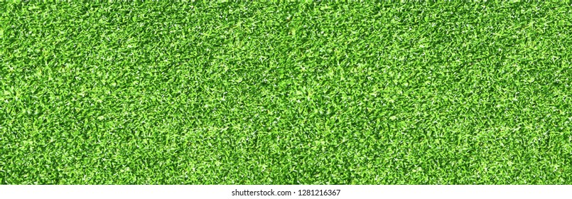 Green grass field illustration banner poster Background Wallpaper Sign Template Soccer Football Rugby golf Basketball Baseball tennis EK WK Europees Football 2019 Sport rugby sports World cup uae golf