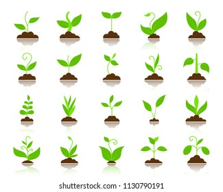 Green grass flat icons set. Vector sign kit of bio plant. Eco sprout pictogram collection includes flower gardening ecology. Simple grass colorful cartoon icon symbol with reflection isolated on white