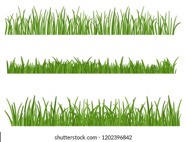 Green Grass isolated on white background. Set of Grass heights design elements of nature. Lawn vector illustration