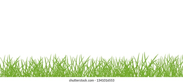 Green grass lawn banner. Border frame isolated transparent background. Vector flat Illustration on white background