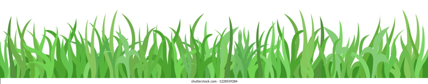 Green grass on white background, panoramic view, vector illustration