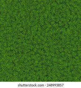 Green grass seamless background texture, vector illustration.