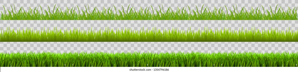 Green grass set, field, nature eco background - stock vector