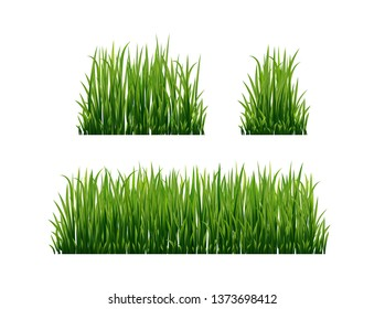 Green grass set. Fresh herb: natural, organic, bio, eco label and shape isolated on white background. Vector illustration.