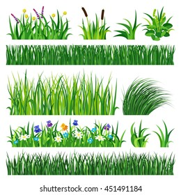 Green grass showing roots vector illustration isolated on white background. Summer natural  grassy green elements