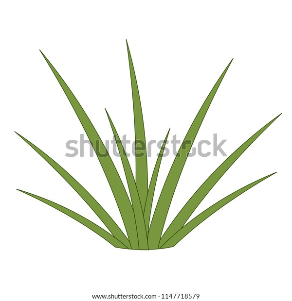 Green grass, small bush shrub, blade of grass, white background, isolated object, simple stylized drawing, light green, light