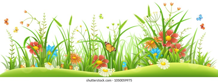 Green grass with spring flowers and butterflies on white background