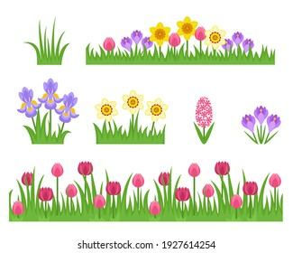 Green grass and spring flowers set. Seamless border with tulips. Daffodil, iris, crocus and hyacinth isolated on white background. Vector cartoon flat simple illustration.