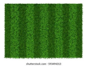 Green grass striped football field, vector illustration.