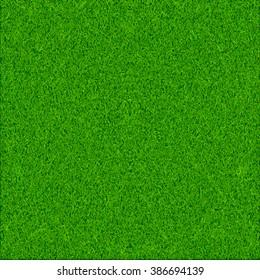 Green grass texture vector background