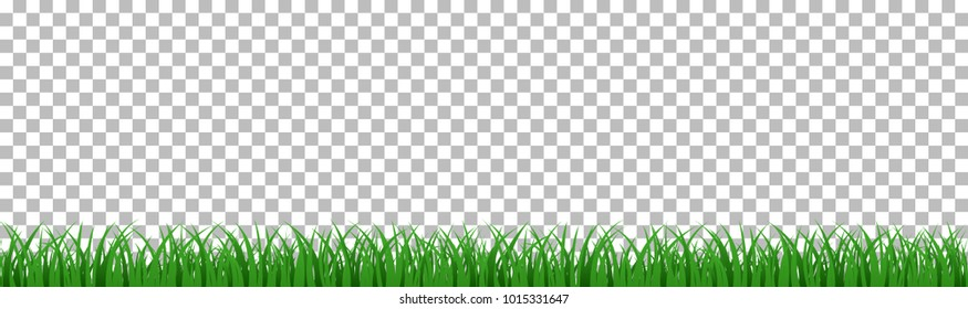 green grass that is longitudinal to use as a design element isolated from a transparent background. Vector illustrations