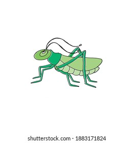 green grasshopper vector illustration on white background. cute and funny animal. hand drawn vector. doodle animal for kids, wallpaper, cover, banner, poster, logo, sticker, clipart, education.
