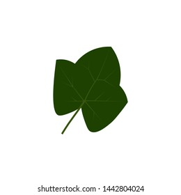 Green ivy leaf vector illustration isolated on a white background