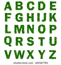 Green leaf alphabet with letters