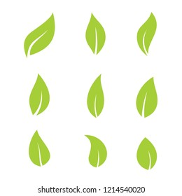 green leaf bio eco set vector logo