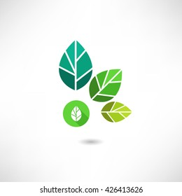 Green Leaf. Eco icon