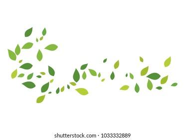 green leaf ecology nature