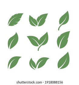 green leaf ecology nature element  vector icon design